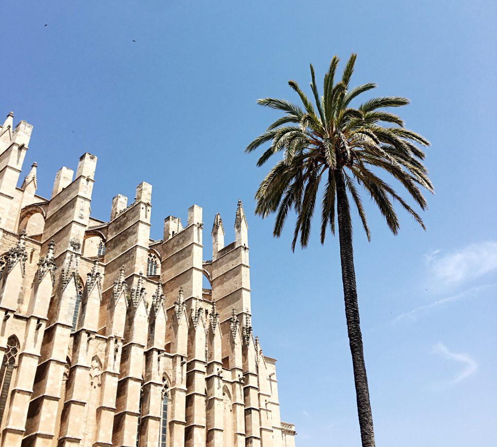 Kathedrale von Palma und Palme